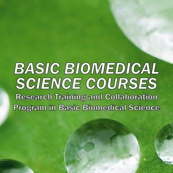 BMSC_features-01-01